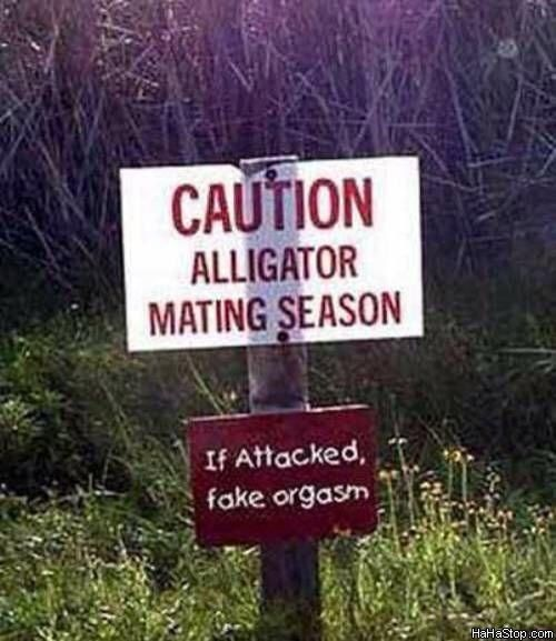 Ridiculous Signs That Will Make You Question Humanity