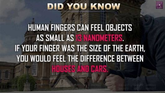 Heaps Of Interesting Fun Facts