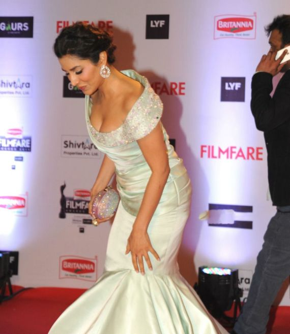 Sophie Chaudhary On Red Carpet Filmfare Awards 2016